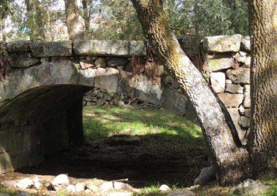ayto-zamayon-puente-1